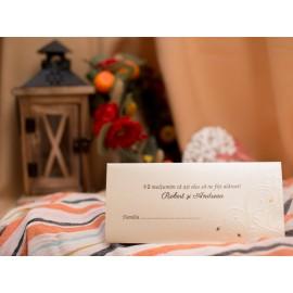 plic de bani botez M3609